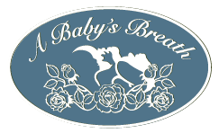 A Baby's Breath - Helping clients develop the skills they need to provide a stable and loving environment for their children